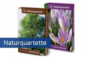 Naturquartette