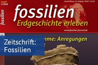 Zeitschrift Fossilien